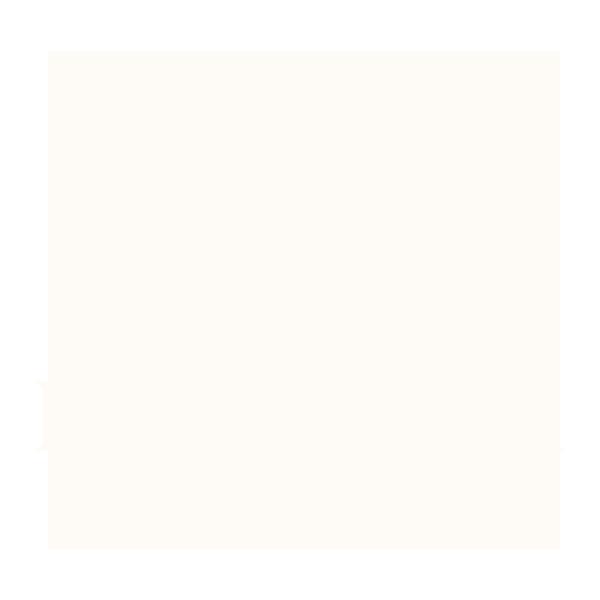 Bray Studios logo